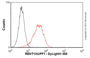 Flow Cytometry-Anti-RENT1/hUPF1 antibody [EPR4681](ab109363)
