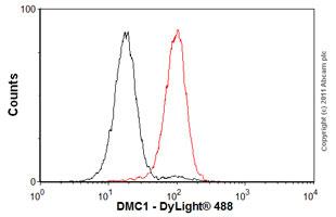 Flow Cytometry-Anti-DMC1 antibody [2H12/4](ab11054)