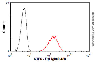 Flow Cytometry - Anti-ATF6 antibody [70B1413] - ChIP Grade (ab11909)
