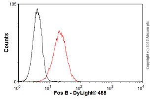 Flow Cytometry-Anti-Fos B antibody [83B1138](ab11959)