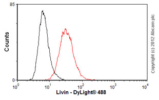 Flow Cytometry-Anti-Livin antibody [88C570](ab11983)
