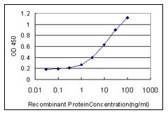 ELISA - RUNX2 antibody [3F5] (ab110102)