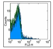 Flow Cytometry - CCR5 antibody [T21/8] (ab110103)
