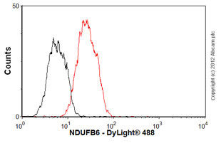 Flow Cytometry - Anti-NDUFB6 antibody (ab110244)