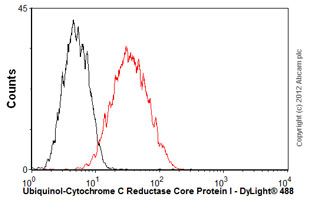Flow Cytometry - Anti-Ubiquinol-Cytochrome C Reductase Core Protein I antibody [16D10AD9AH5] (ab110252)