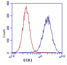 Flow Cytometry - ECH1 antibody [9D11AF3 ] (ab110294)
