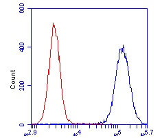 Flow Cytometry - OGDH antibody (ab110306)