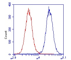 Flow Cytometry - VCP antibody [3E8DC11 ] (ab110308)