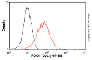 Flow Cytometry - Anti-PDK4 antibody [1C2BG5 ] (ab110336)