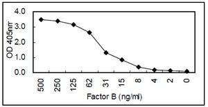 Sandwich ELISA - Factor B antibody [KT21] (ab110651)