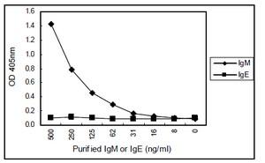 Sandwich ELISA - IgM antibody [KT16] (ab110653)