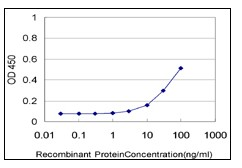 Sandwich ELISA - Netrin G2 antibody [4F11] (ab111994)