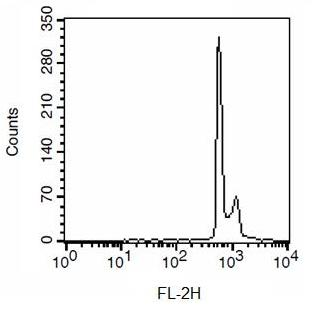 Flow Cytometry - Cell Cycle Assay Kit (Fluorometric - Red) (ab112117)