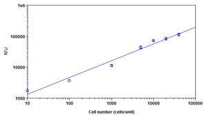 Functional Studies - Cell Viability Assay Kit (Fluorometric - Near InfraRed) (ab112123)