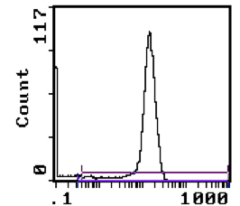 Flow Cytometry - CD8alpha antibody [YTS 169AG 101HL] (FITC) (ab112219)