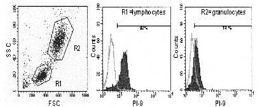 Flow Cytometry - SerpinB9 antibody [7D8] (ab112220)
