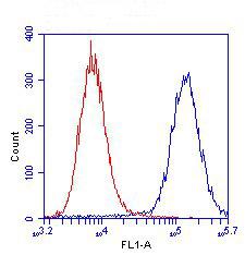 Flow Cytometry - BAP31 antibody [7A3BB6] (ab112993)