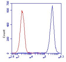 Flow Cytometry - Transketolase antibody [7H1AA1] (ab112997)