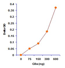 Functional Studies - EpiSeeker Histone H3 (K9) Methyltransferase Activity Quantification Assay Kit (ab113453)