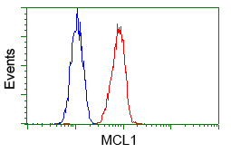 Flow Cytometry - Anti-MCL1 antibody [2E11] (ab114026)