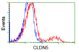 Flow Cytometry - Anti-Claudin 5 antibody [1G4] (ab114027)