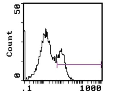 Flow Cytometry - Anti-Myeloid Precursor Cells  antibody [OX-82] (Phycoerythrin) (ab114040)