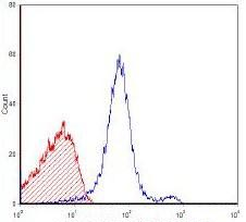 Flow Cytometry - Anti-T Cell Receptor antibody [KJ1-26] (ab114063)