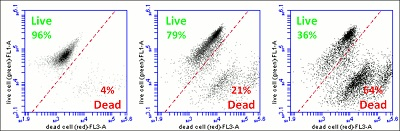 Functional Studies - Live/Dead Cell Assay (ab115347)