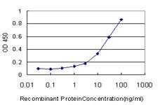 ELISA - Anti-NR1D1 antibody [4F6] (ab115552)