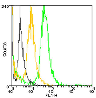 Flow Cytometry - Anti-GRP78 BiP [10C3] antibody (DyLight® 488) (ab115638)