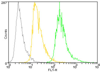 Flow Cytometry - Anti-PDI antibody [1D3] (DyLight® 488) (ab115643)