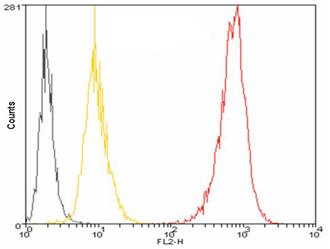 Flow Cytometry - Anti-PDI antibody [1D3] (Phycoerythrin) (ab115650)