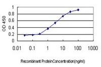 ELISA - Anti-RUNX2 antibody [1D8] (ab115899)