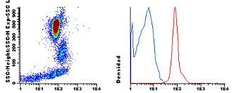 Flow Cytometry - Anti-Integrin alpha 3 antibody [VJ1/6] (CF405M) (ab115912)