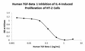 Other-TGF beta 1 protein (Active)(ab116150)