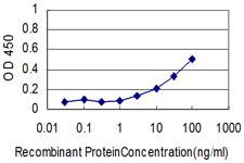 Sandwich ELISA - Anti-Human Serum Albumin antibody [1G12-1B3] (ab117455)