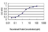 ELISA - Anti-S100 alpha 6 antibody [6B5] (ab117714)