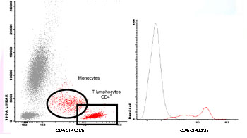 Flow Cytometry - Anti-CD4 antibody [HP2/6] (CF405M) (ab117726)