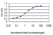 Sandwich ELISA - Anti-Sprouty 1 antibody [3H4] (ab117744)