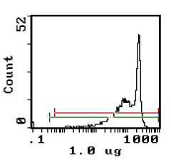 - Anti-CD90 / Thy1 antibody [IBL-1] (Biotin) (ab117755)