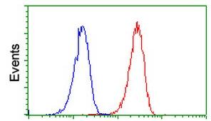 Flow Cytometry - Anti-PLEKHA3 antibody [2D1] (ab117849)