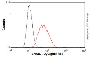 Flow Cytometry-Anti-SNAIL antibody [10D7](ab117866)