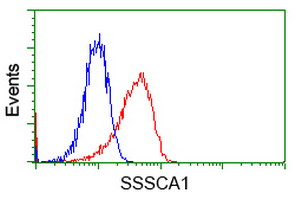 Flow Cytometry - Anti-SSSCA1 antibody [2F5] (ab117911)