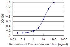Sandwich ELISA - Anti-PCF11 antibody [3G4] (ab118084)