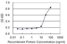 Sandwich ELISA - Anti-SPAG4 antibody (ab118100)