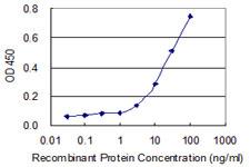 Sandwich ELISA - Anti-SPSB1 antibody (ab118101)