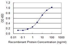 Sandwich ELISA - Anti-Cylicin 1 antibody (ab118103)