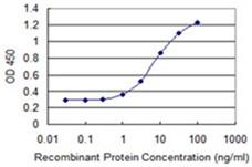 Sandwich ELISA - Anti-GPSM3 antibody (ab118118)