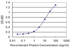 Sandwich ELISA - Anti-Syntaxin-binding protein 4 antibody [2B12] (ab118123)