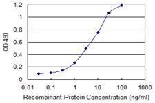 Sandwich ELISA - Anti-KRT71 antibody (ab118124)